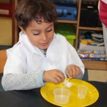 Christopher Robin Pre-Primary Grade R Science 11