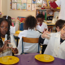 Christopher Robin Pre-Primary Grade R Science 2