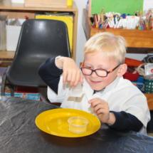 Christopher Robin Pre-Primary Grade R Science 4