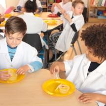 Christopher Robin Pre-Primary Grade R Science 6