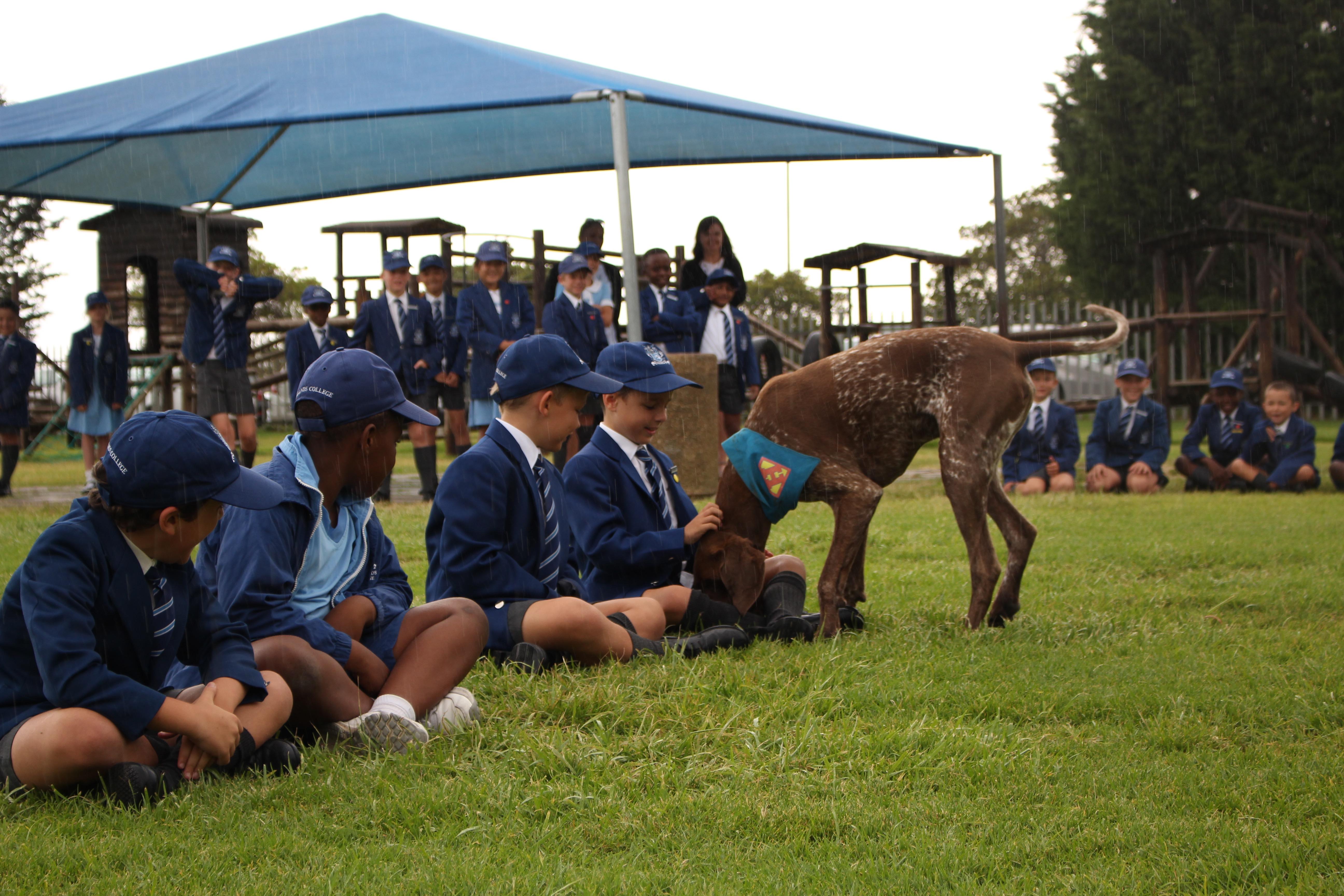 Parklands College Junior Preparatory Enrichment