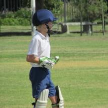 Preparatory Cricket 2